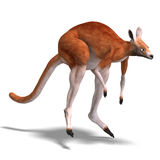 Big red kangaroo Stock Photos