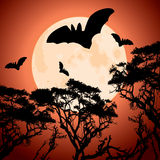 Big red moon, trees and bats Stock Images