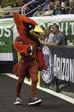 Big Red NFL Arizona Cardinals Mascot Royalty Free Stock Photo