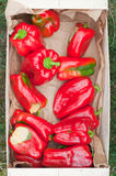 Big red peppers in a box Royalty Free Stock Photos