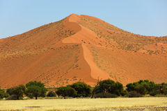 Big red sand dune Royalty Free Stock Photography