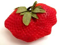 Big Red Strawberry Royalty Free Stock Images