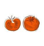 Big red tomato. shabby vegetable image. Royalty Free Stock Image