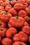 Big red tomatoes on the tray Royalty Free Stock Photos
