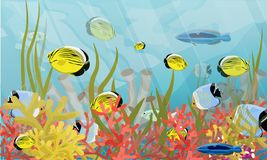 Big reef. Corals, algae and a variety of tropical fish. stock illustration