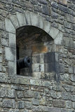 Big Renovated Cannon on Edinburgh Castle Stock Photos