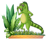 A big reptile. Illustration of a big reptile on a white background Stock Photo