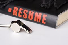 Big resume Royalty Free Stock Images