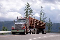 Big rig semi truck with day cab transporting logs on the road. Big rig American idol day cab powerful semi truck with specialized semi trailer transporting long Royalty Free Stock Photography