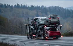 Big rig long haul semi truck transporting cars on wet twilight evening road. Car transportation by big rig semi truck allows all dealerships to ensure stock photo
