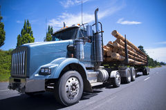 Big rig semi truck carry trees logs on straight road Royalty Free Stock Image