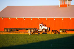 Big rig semi truck in front red barn and horses Royalty Free Stock Photos