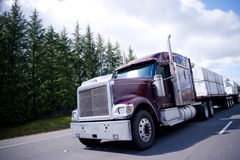 Big rig semi truck with lumber cargo on flat bad Royalty Free Stock Image