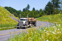 Big rig semi truck with lumber on green highway Stock Photo