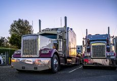 Free Big Rigs Classic Bonnet Semi Trucks Standing In Row On Truck Stop Parking Lot At Evening Time Reflecting Sunset And All Around By Royalty Free Stock Photography - 167315977