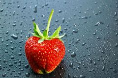 Big ripe berry red strawberry on a dark background water drops c. Opy space for text and logo Stock Images