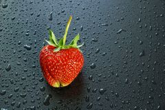 Big ripe berry red strawberry on a dark background water drops c. Opy space for text and logo Royalty Free Stock Photos