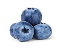 Big ripe blueberries Stock Image