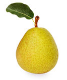 Big ripe pear with green leaf Stock Images