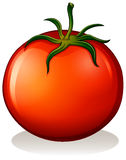 A big ripe tomato Royalty Free Stock Images