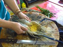 Big river prawn cut on the block. Giant river prawn was cut by chef ready to grill in thai kitchen Stock Photography