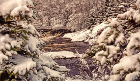 Big River in snow near Flatrock, Newfoundland, Canada Stock Images