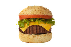 Big roasted burger Stock Images