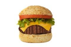 Big roasted burger Stock Images