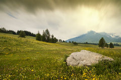 The big rock in the meadows. A big rock is interrupting a meadow full of yellow flowers; the shot is a typical mountains landscape royalty free stock photo