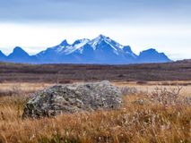 Iceland - Golden grassland with a tall mountain chain in the back stock photography