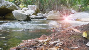 Big rock in waterfall with tree and flare. Low angle view stock video
