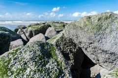 Big rocks on beach with blue sky stock images