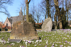 Big rocks in a flowerfield. Big stone rocks at the park in the city of rocks, spring in Amersfoort Stock Image