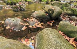 Big rocks in the mountain creek Stock Images