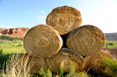 Big rolls hay. Big rolls of hay against greenery and distant orange limestone mountain royalty free stock photos