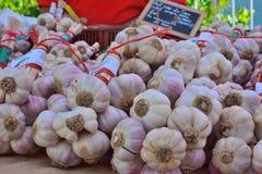 Big Rose tasteful garlic at a local market Stock Photo