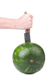 A big round green striped watermelon on the white background is being stabbed by a white hand with a  big sharp knife. Royalty Free Stock Photo