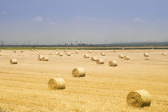 Big round haystacks of straw in the meadow. Greece Royalty Free Stock Images