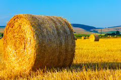 Big round straw bales in the meadow Royalty Free Stock Photos