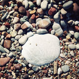 Big round white stone amongst grey and brown pebbles on the beach. Royalty Free Stock Photography