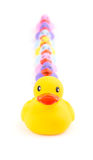 Big rubber duck in front of a line of small ducklings Royalty Free Stock Photography