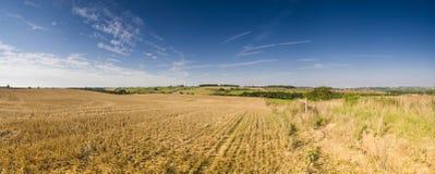 Big rural golden landscape Royalty Free Stock Photo