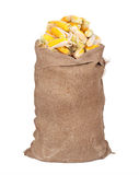 Big sack of corn cobs Royalty Free Stock Photo