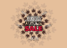 Big sale banner with autumn leaves. Fall sale vector design for retail advertising campaigns. Poster, concept, leaflet, flyer. Vector Illustration. EPS 10 Stock Photos