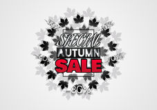 Big sale banner with autumn leaves. Fall sale vector design for retail advertising campaigns. Poster, concept, leaflet, flyer. Vector Illustration. EPS 10 Royalty Free Stock Photography