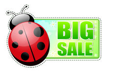 Big sale green label with ladybird Stock Images