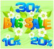 Big sale inscription spring Royalty Free Stock Photo