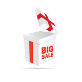 Big sale sign on package color vector. Illustration Royalty Free Stock Photos