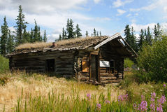 Big Salmon trading post ruin Stock Images