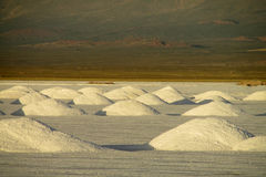 Big salt piles on salt lake surface Stock Photography